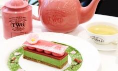 นั่งจิบชาหอมๆทานอาหารอร่อยๆพร้อมเก็บโปร.พิเศษ ซากุระมูสเค้กและชาซากุระที่ TWG Tea สยามพารากอน