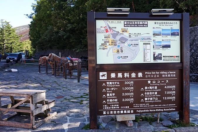 Mount Fuji 12