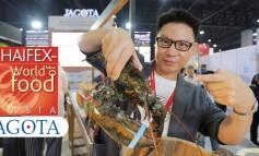 พาชมทุกซอกทุกมุมของบูท JAGOTA ในงาน THAIFEX 2018 ที่บอกได้คำเดียวว่าห้ามพลาด!