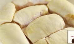 ชีสเค้กทุเรียนหน้าล้นหอมอร่อยหวานน้อยแต่ฟินมากกับเมนูสุดฮิต Durian Cheesecake จาก Ivan factory