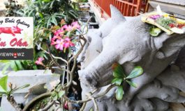 มาบาหลีก็ต้องมาลองหมูหันเจ้าดังที่ Warung Babi Guling Ibu Oka, Ubud, Bali, Indonesia