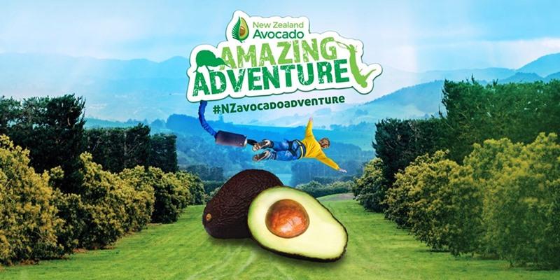 ฟรี ลุ้นบินลัดฟ้าพาทัวร์เที่ยวนิวซีแลนด์ 5 วันกับ New Zealand Avocado Amazing Adventure 2019