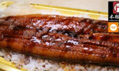 เก็บ 3 โปรโมชั่นสำหรับอาหารญี่ปุ่น Delivery ที่ Honmono Sushi @ ทองหล่อ 23